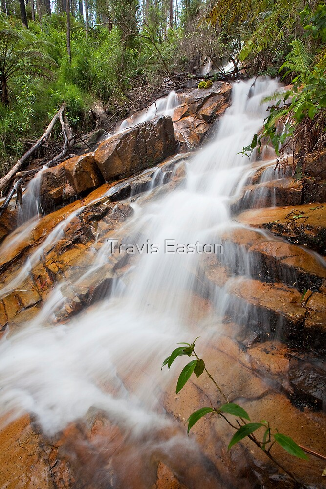 S Falls, 2nd step by Travis Easton