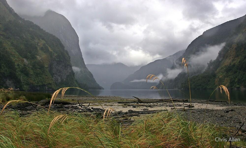 Doubtful Sound in misty rain by Chris Allen