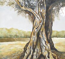 Olive Tree by Michelle Gerber
