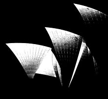 ICON - Sydney Opera House by John Dalkin