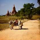 Ox Cart in Bagan - Burma by TravelShots