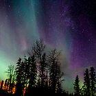 Nov 13th/12 Auroras by peaceofthenorth