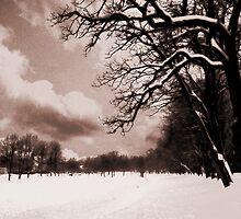 winter tale  by studena