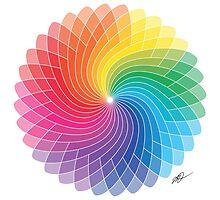 Colour Wheel Flower by castelmi