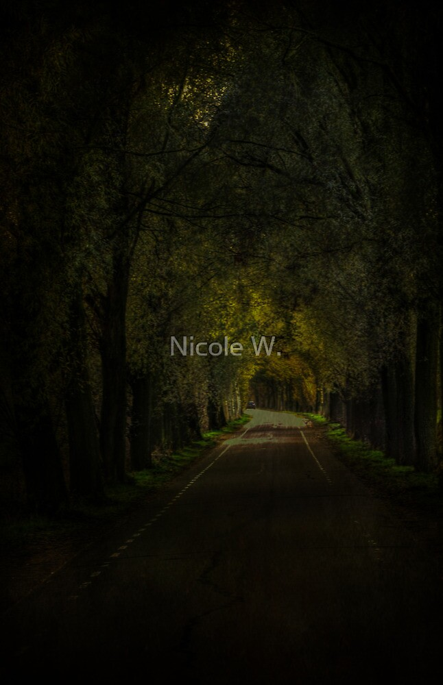 Road to nowhere by Nicole W.