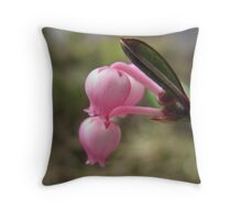 Bog-Rosemary, Andromeda polifolia Throw Pillow