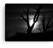 Moonlight and Tree in Black and White Canvas Print