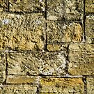 Old Brick Wall by Sue Robinson