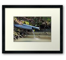 Water Outflow in Woodland Framed Print