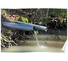Water Outflow in Woodland Poster