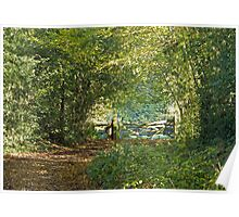 Woodland Path and Gate Poster