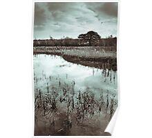 Autumn Ponds Poster