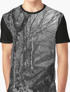 Forest under the fog Graphic T-Shirt
