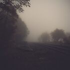 Tracks 003 by Ian Ross Pettigrew