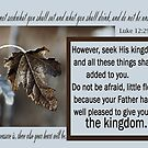 Seek His Kingdom ~ Luke 12 by Robin Clifton