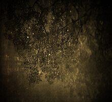 Nightfall: Winter by ambassad