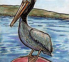 San Francisco Pelican by Diana Cardosi-Bussone