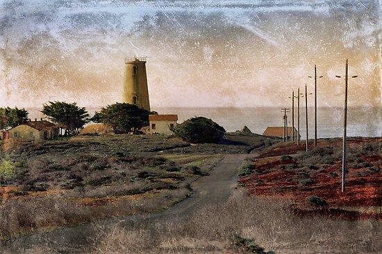Piedras Blancas Light House by CarolM