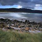 Cloudy Bay by Adam  Davey