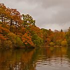 Autumn at Derwent Water by JMChown