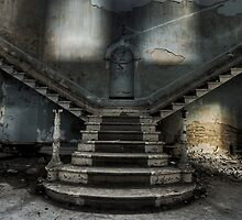 The Beauty  Of Abandon II by Andrew Coogan
