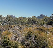 Trekking Tasmania by possumhollow
