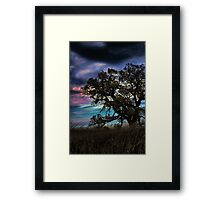 Painted Framed Print
