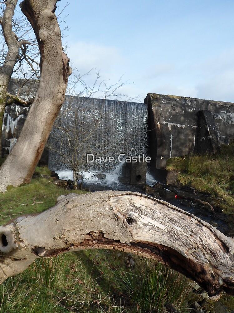 strickland walks 1 by Dave Castle