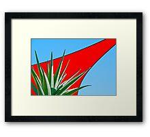 Aloe 'Hercules' Framed Print