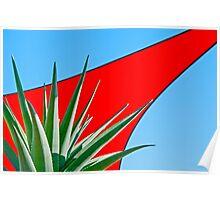 Aloe 'Hercules' Poster