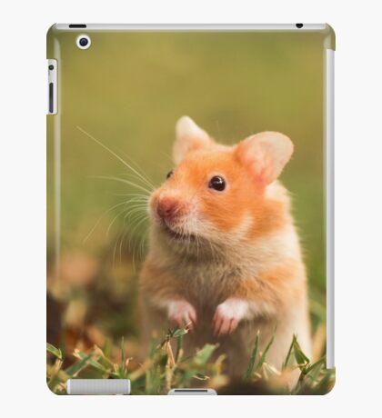 golden hamster pet iPad Case/Skin