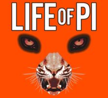 Life of Pi by picky62version2