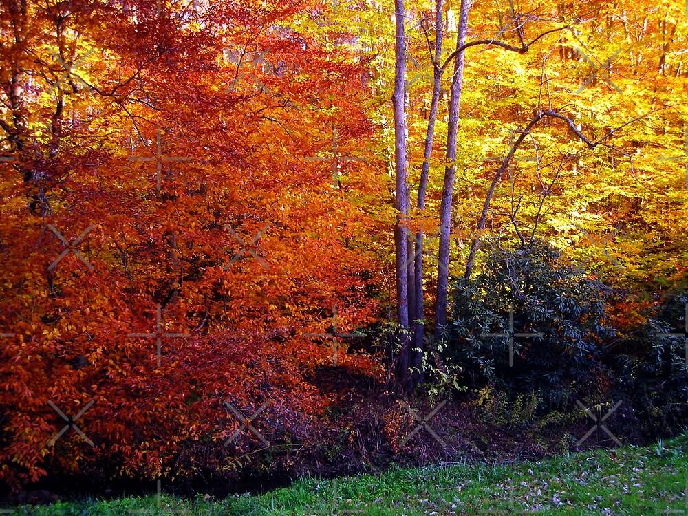autumn treasure by LoreLeft27