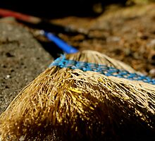 Broom by jessicamunday