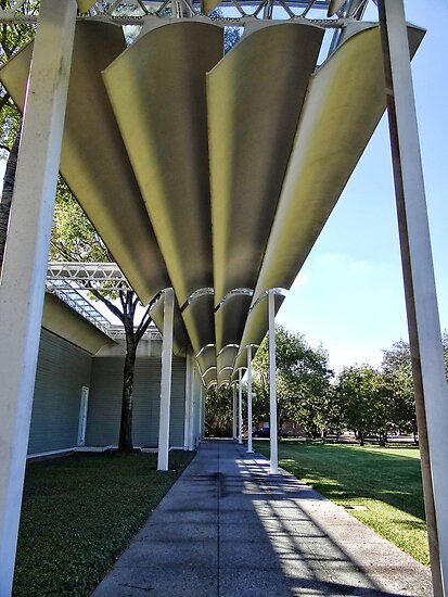 The Menil Art Museum by vigor