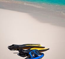 Snorkeling gear. by FER737NG