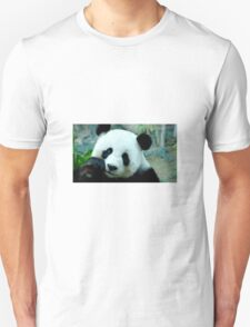 Beautiful Panda  T-Shirt