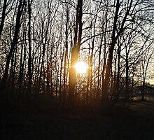 Laguana Sunrise by Derteuflische
