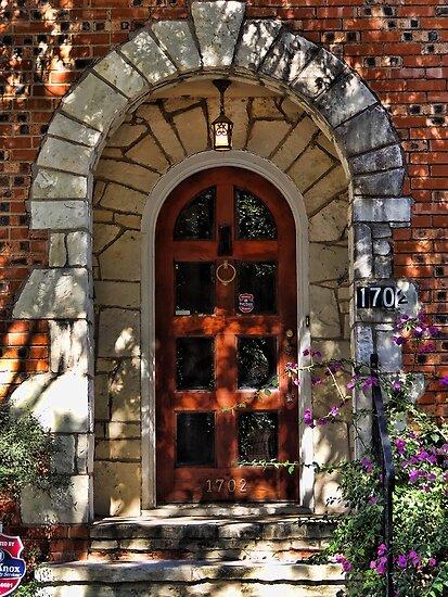 The Door by vigor
