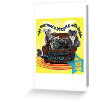 Koala Infestation Greeting Card