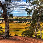 Brookton lookout by BigAndRed