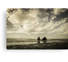 Another Moody Monday Canvas Print