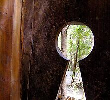 Forest Door by Michelle Ricketts