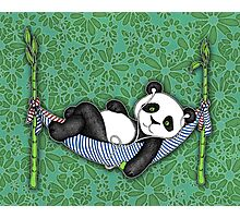 iPod Panda Photographic Print