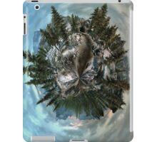 Skyrim Planetoid iPad Case/Skin