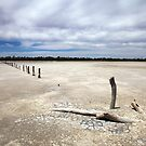 Near Waikerie, SA by Roberts Birze