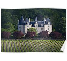 French castle in vineyards Poster
