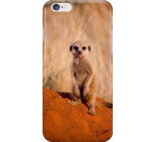 Baby Meerkat iPhone Case/Skin