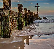 Seringham Beach protrait by Mark Bunning