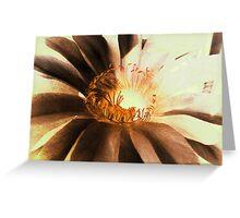 Textured Kaktus Flower. Greeting Card